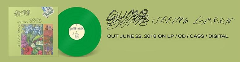 Dumb - Seeing Green lp vinyl cd record tape cassette